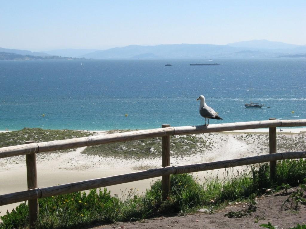 union-de-playa-de-rodas-y-playa-de-vios-islas-cies